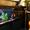 Продаётся аквариум с рыбами и оборудованием,  ёмкость 350 литров #207118