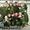 летняя камуфляжная форма для кадетов,зимняя камуфляжная форма для кадетов - Изображение #3, Объявление #658555
