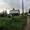 дача в СНТ Флора. Удачное место для комфортной жизни - Изображение #4, Объявление #1662096