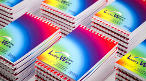 Листовки, буклеты, брошюры, визитки, бланки и вся полиграфия - Изображение #3, Объявление #1702706