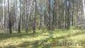 земельный участок в ДНТ Хрустальный  - Изображение #3, Объявление #1268518